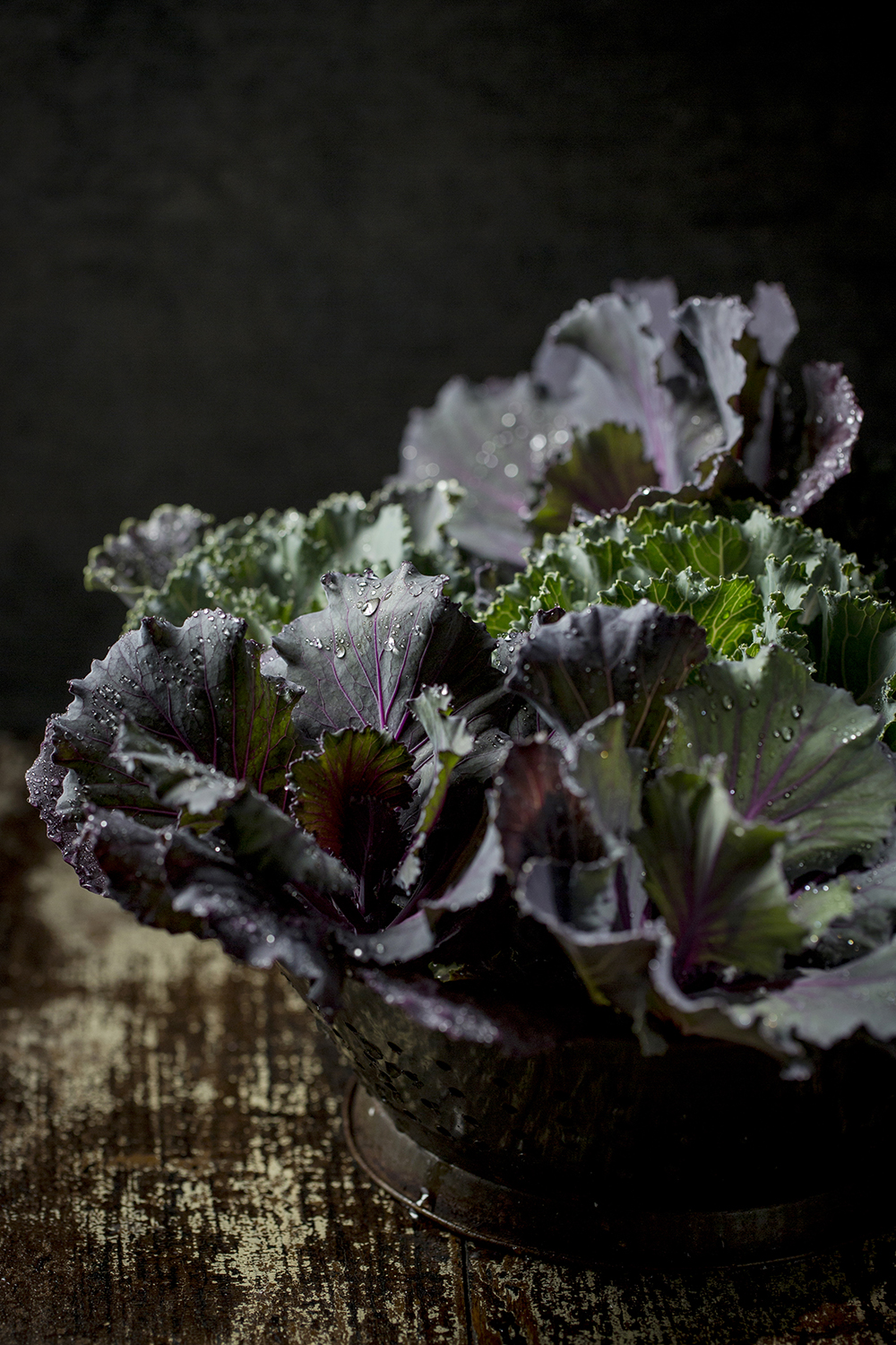 Karen E. Segrave | KES Photo