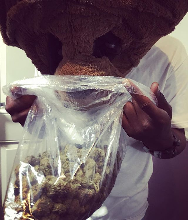 Winnie the Pooh found his honey #thebearnecessities #majahlife #maschinelife #12west #losangeles #weedlife #weedporn #ashyelbows #famtide #waianae #alief #makaha #cannibus #smokeythebear #highvibes #hightimes #fuccwitmeyouknowigotit