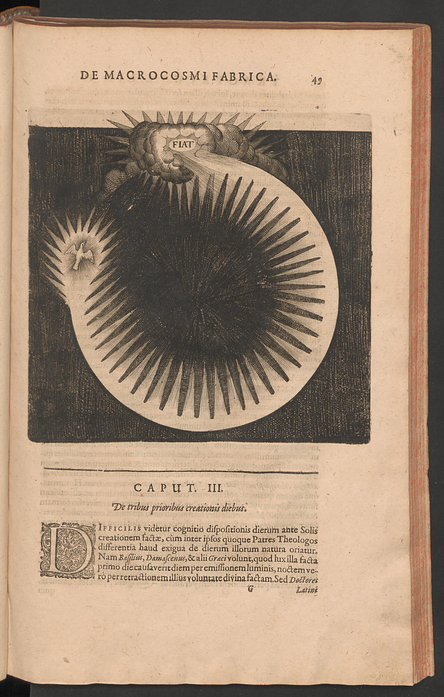 49.jpg