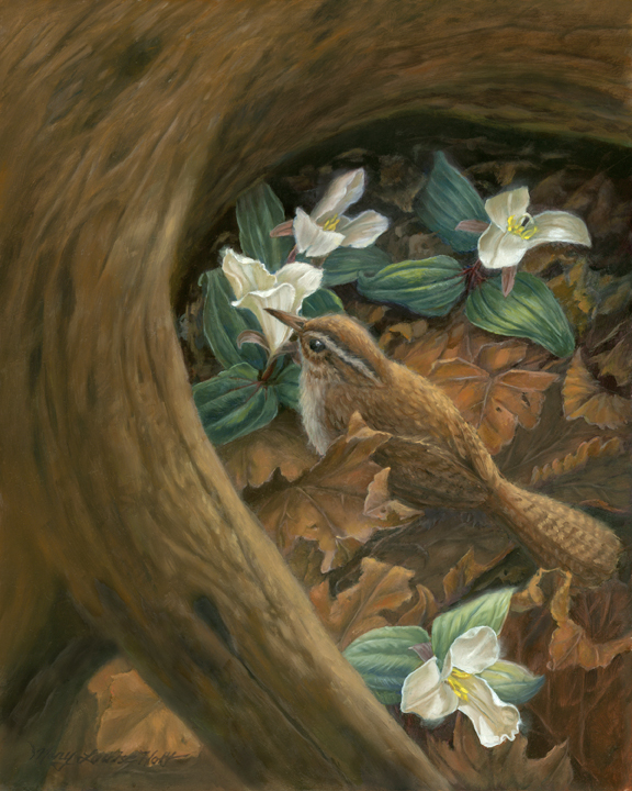 """Carolina Wren and Snow Trillium"", 8 x 10 in, oil on panel"