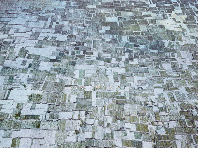 Seaweed Farms I, Bali, Indonesia,  2014, Archival pigment print, 44 x 55 inches