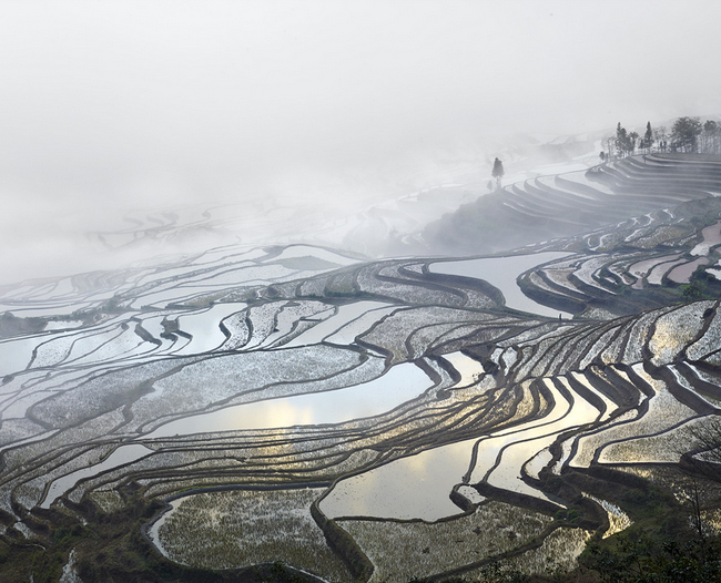 Rice Terraces (Duoyishu), Yunnan, China , 2013, Archival pigment print, 44 x 55 inches