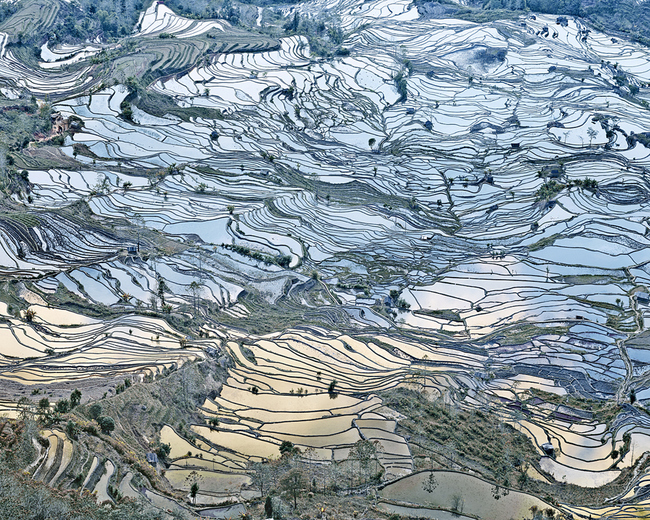 Rice Terraces (Laohuzui II), Yunnan, China , 2013, Archival pigment print, 32 x 40 inches