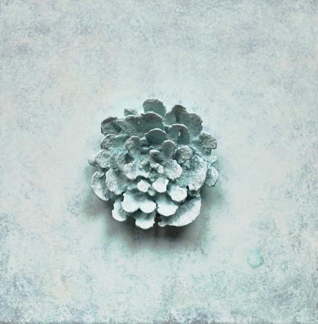 Bronze Blossom (White) , 2012, Bronze (unique cast), 12 x 12 x 1 5/8 inches