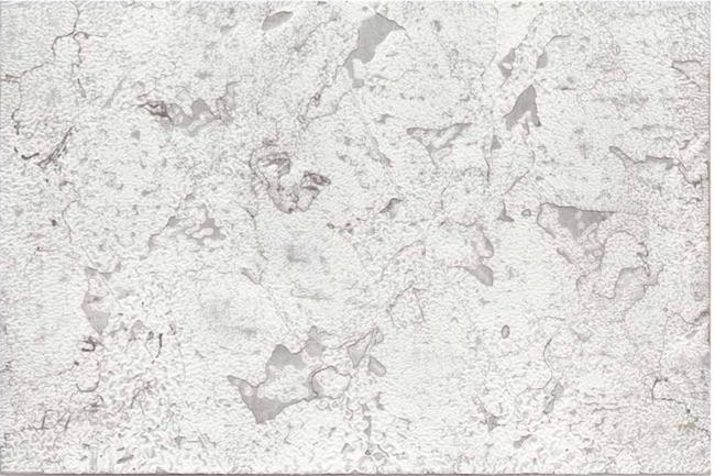 Martin Kline,    White Elephant,  2013, Encaustic on Linen, 60 1/4 x 40 x 2 1/8 inches