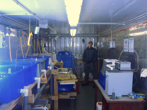 Paul in the fish lab at Scott Base.