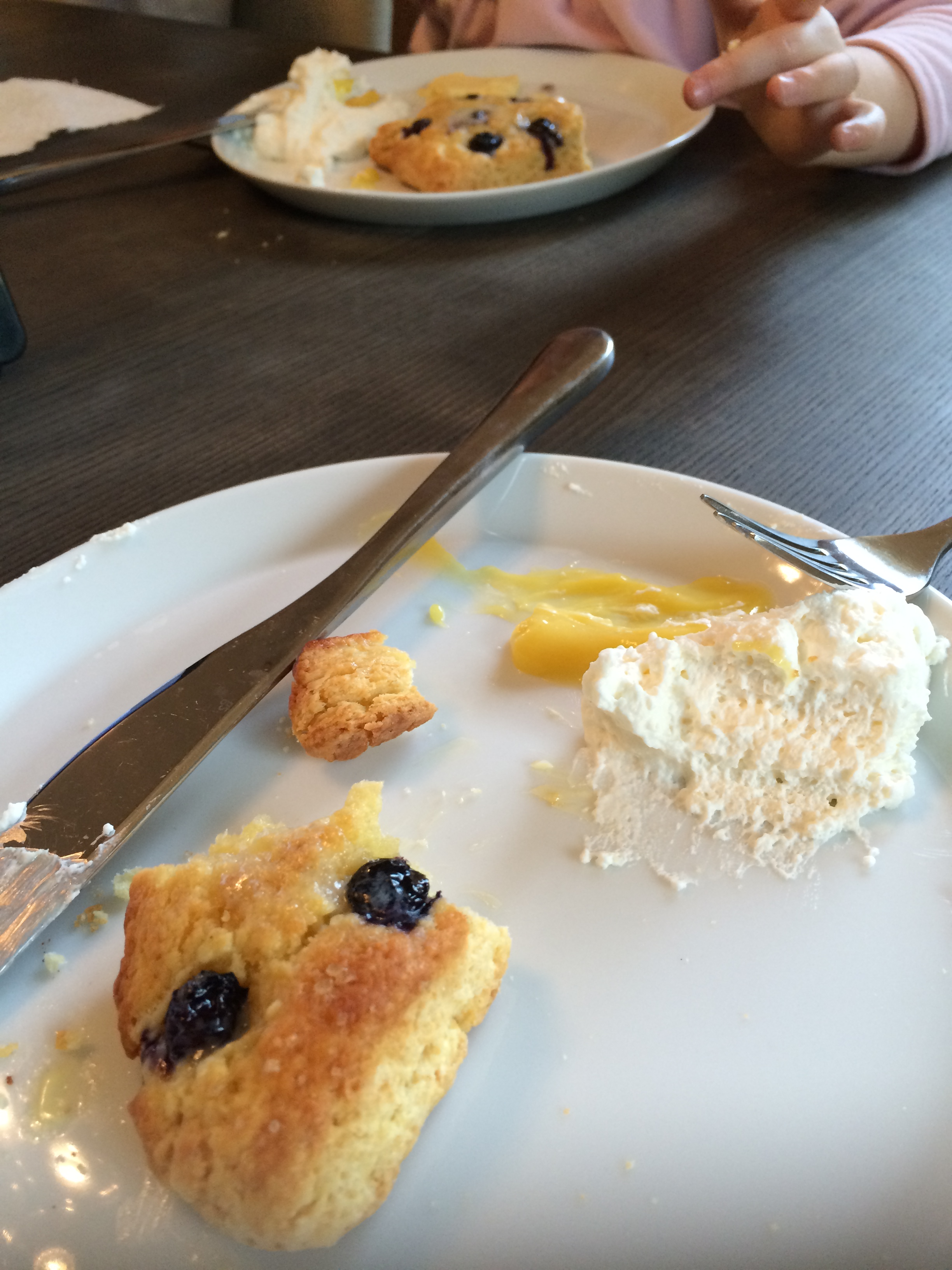 My daughter and I used to sit on the patio in our pajamas   and eat these blueberry-lemon scones just from the oven while we sipped our warm tea and looked out over the lake.  They are dreamy with fresh lemon curd and cream too!