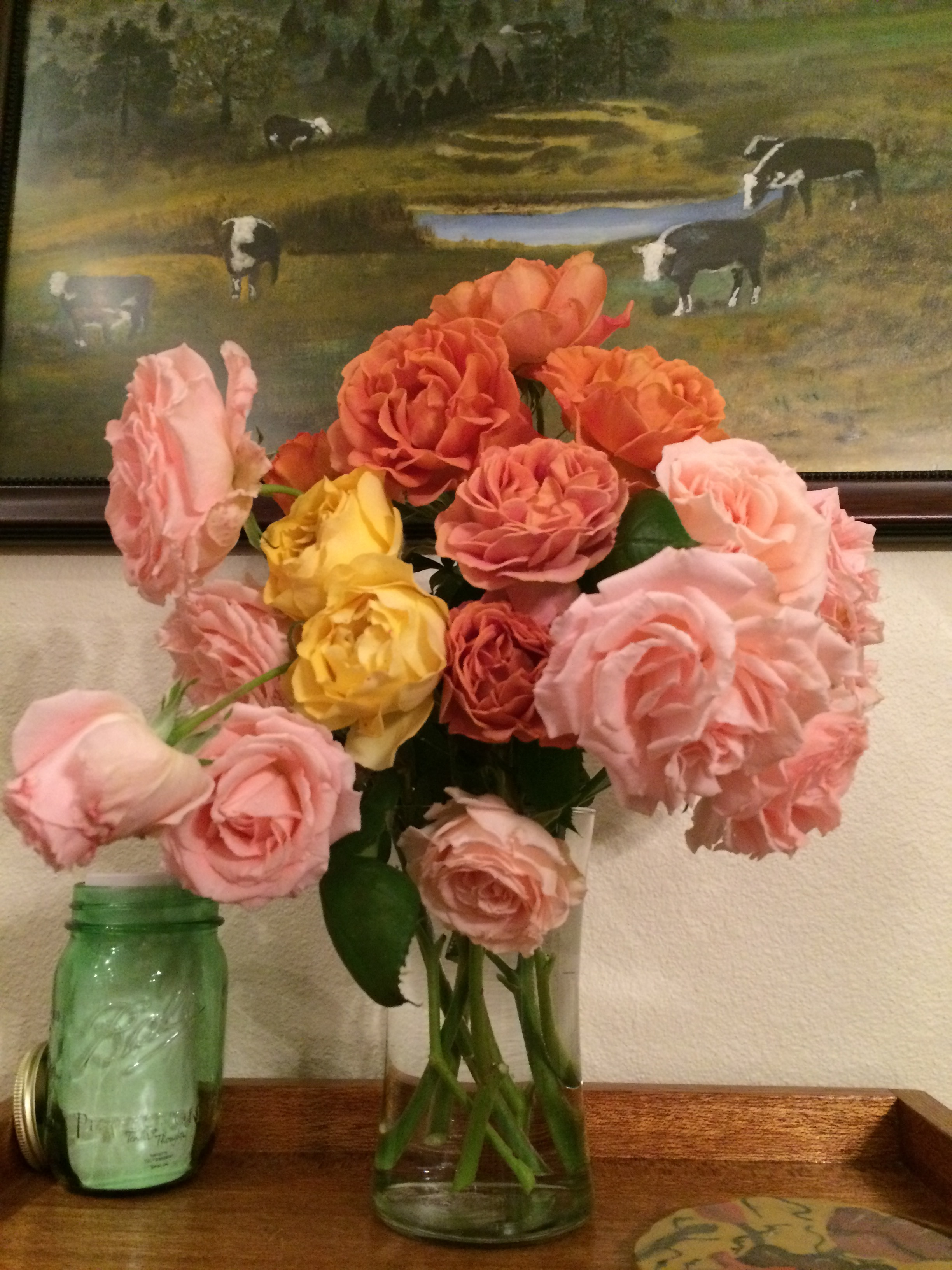 2015_Roses.JPG