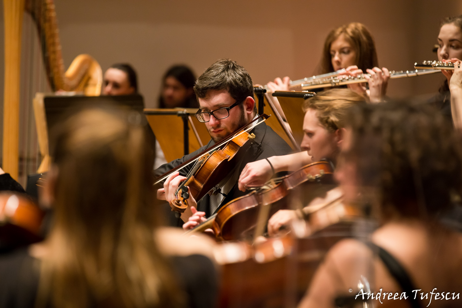 String players mid-concert - Light of Music Orchestra