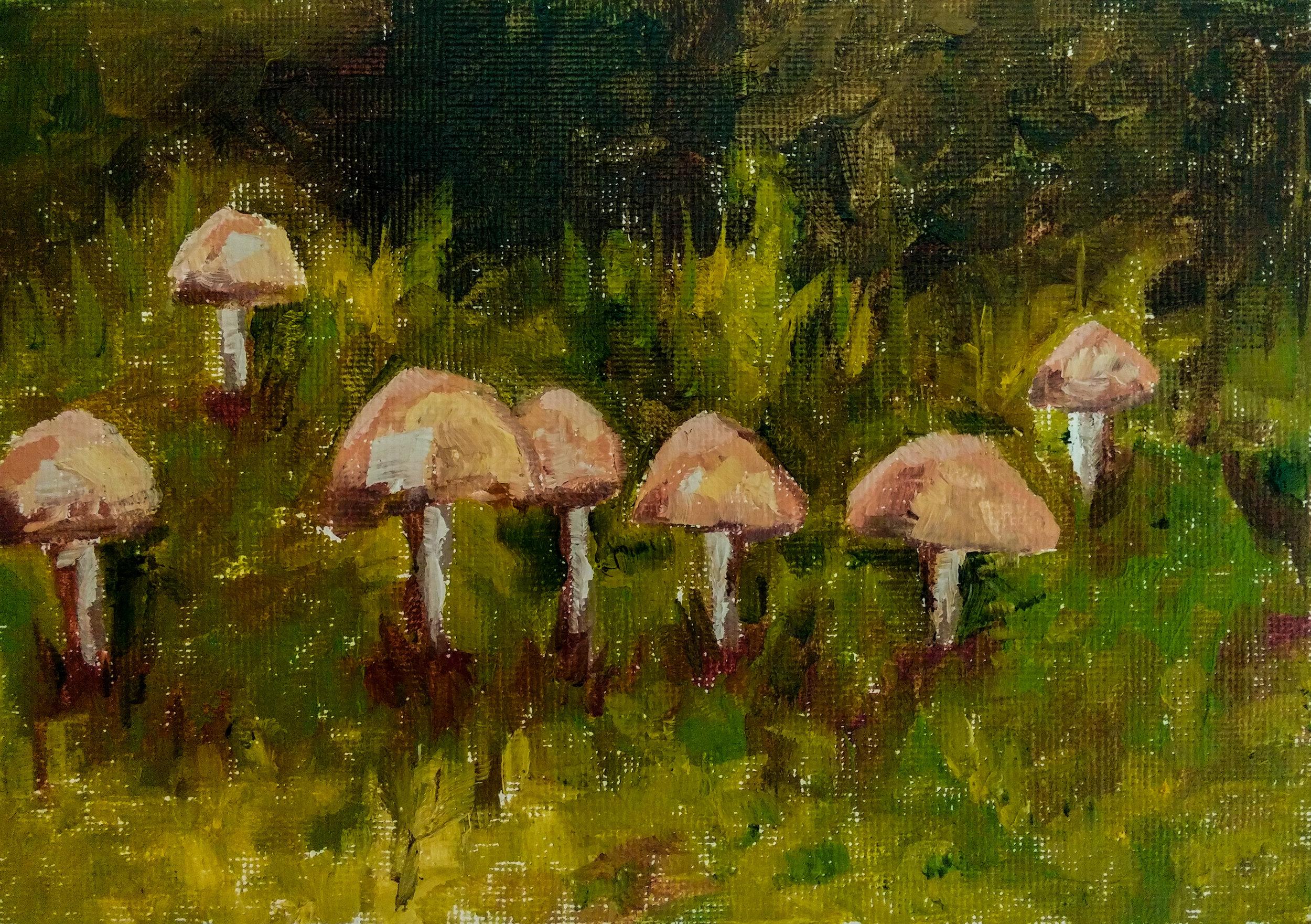Day 6-Mushrooms.jpg
