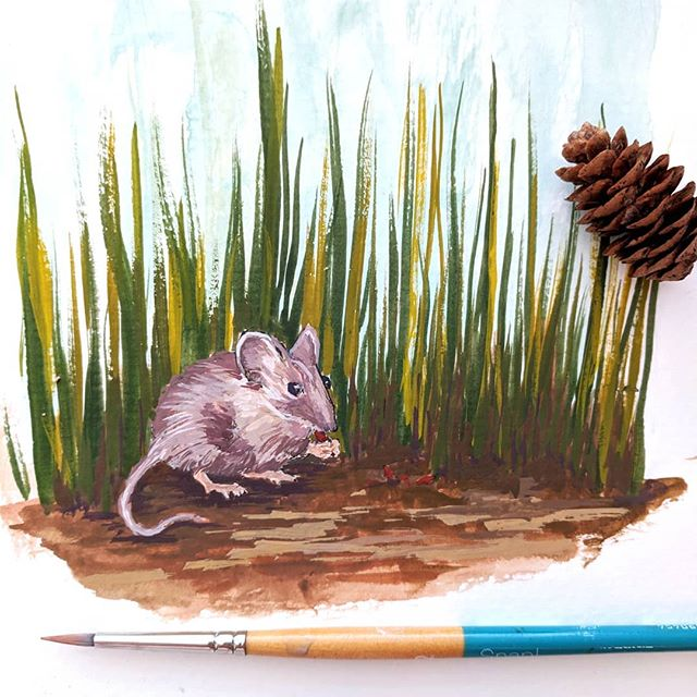 Little mouse, hunting for seeds 😊 . . . #artistsoninstagram #animalillustration #animalpainting #gouache #gouachepainting #sketchbook #dailyart #dailysketch #dailypainting #illustratorsoninstagram #illustratorsoninstagram #acrylagouache #natureart