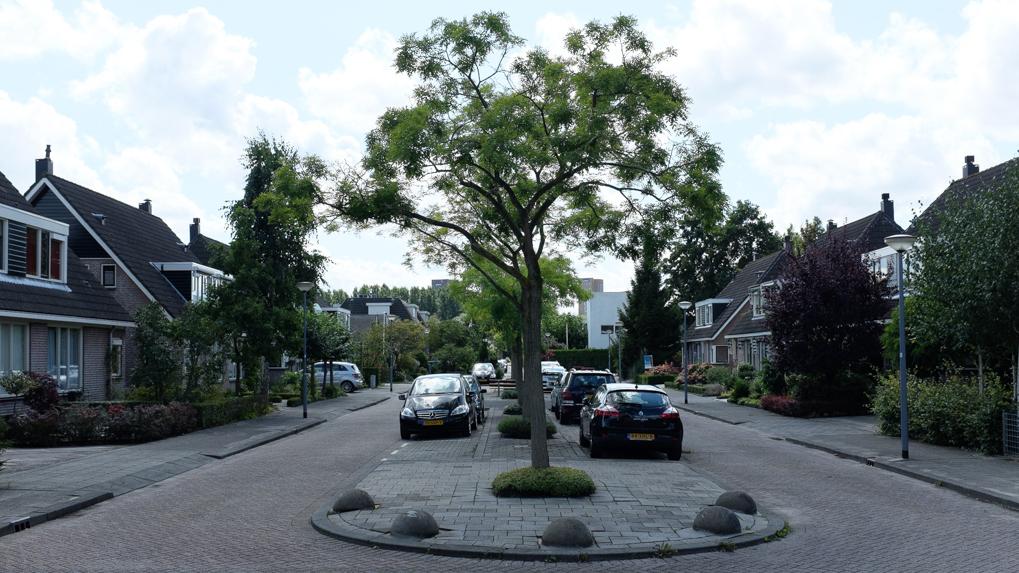 Rotterdam - Kornelis van Tollaan