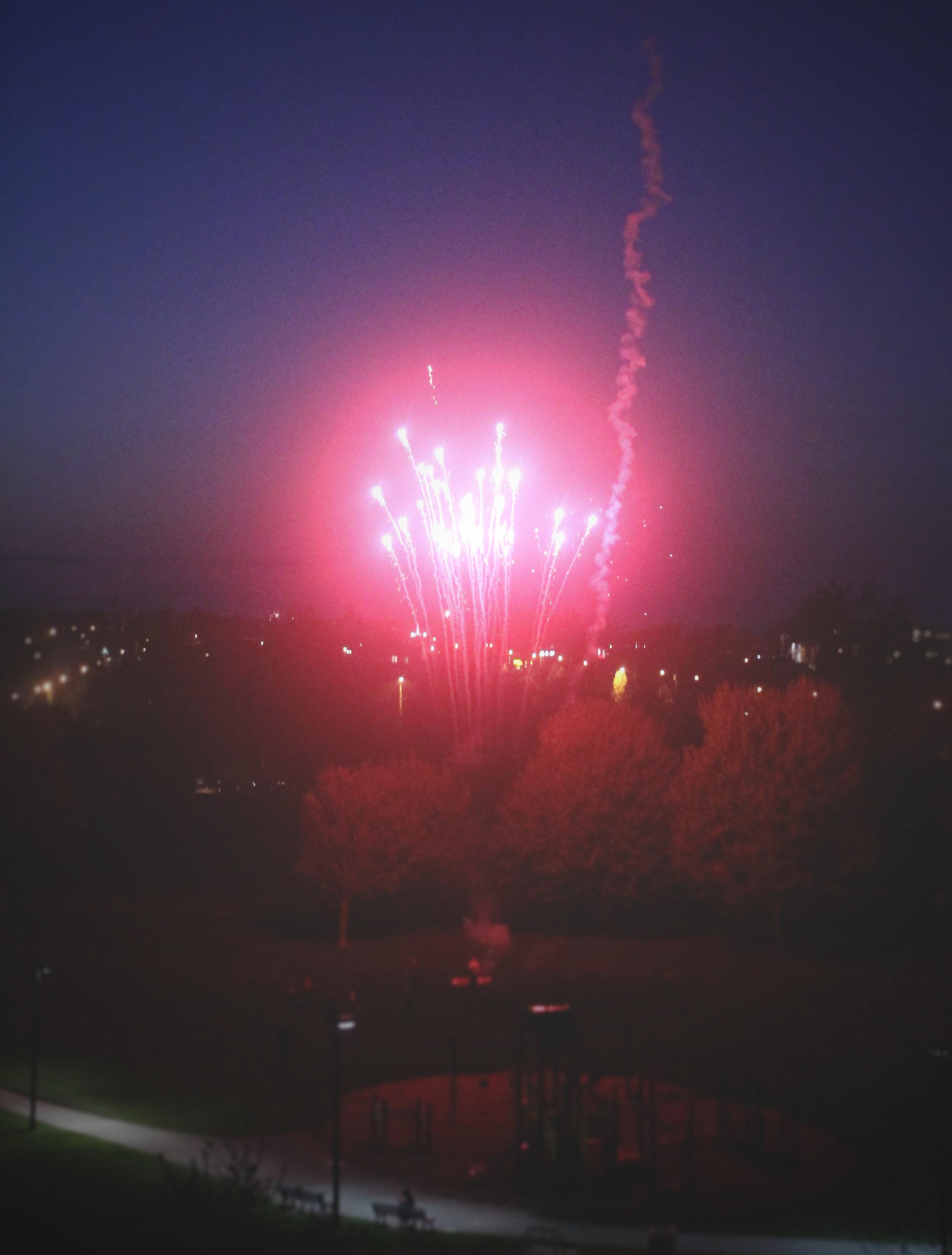 The Firework.jpg