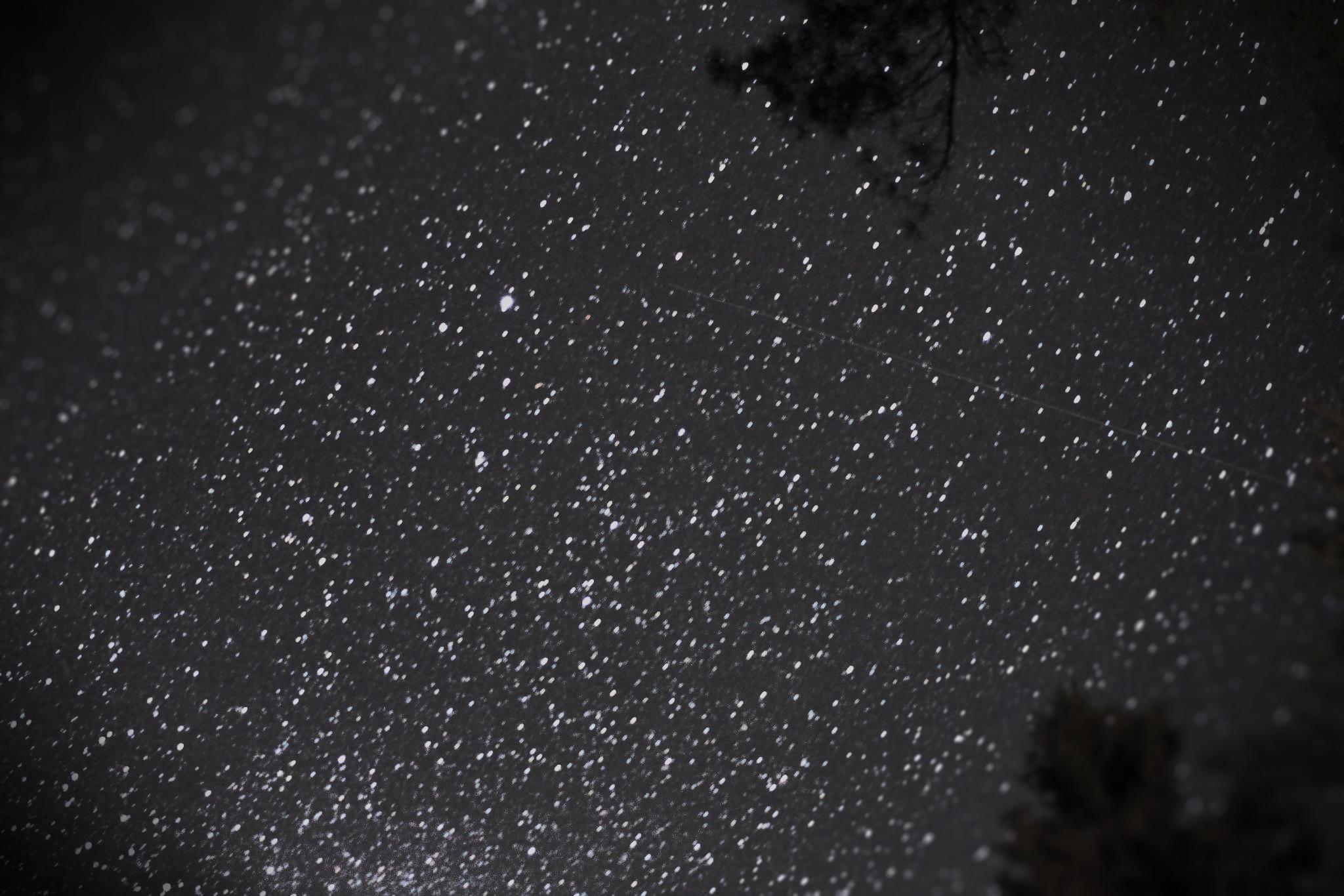 The Stars.jpg