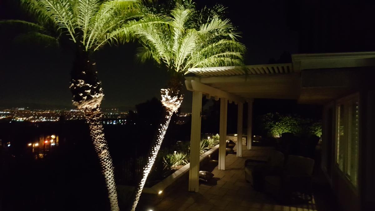 Anaheim Hills Outdoor LED Landscape Lighting