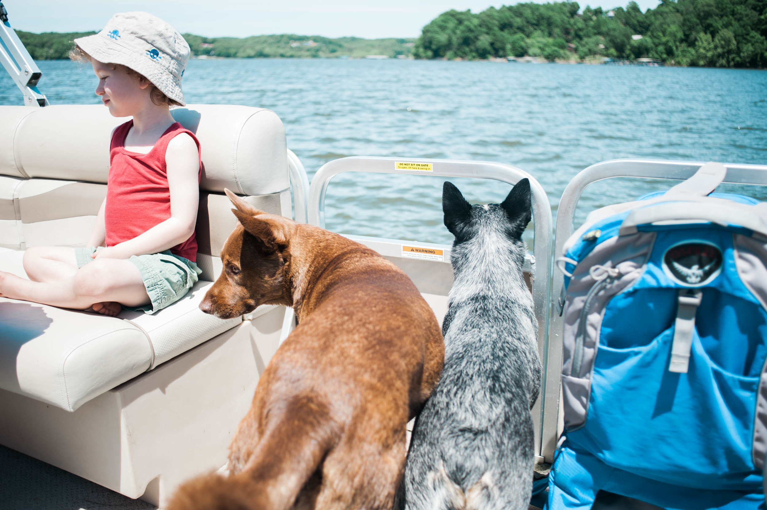 lake_house_vacation_in_waverly_tennessee_with_nephews_by_mnewsom_photography_summer_photos