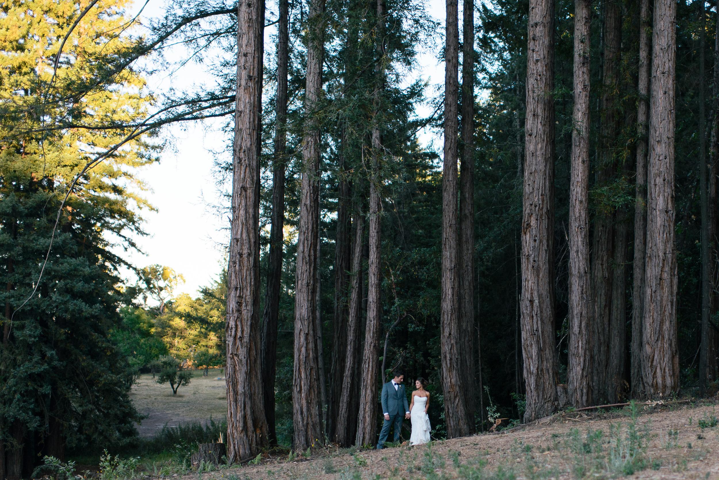 m-newsom-photography-chris-and-kim-napa-valley-wedding-savannah-georgia-wedding-photographer (943 of 1586).jpg