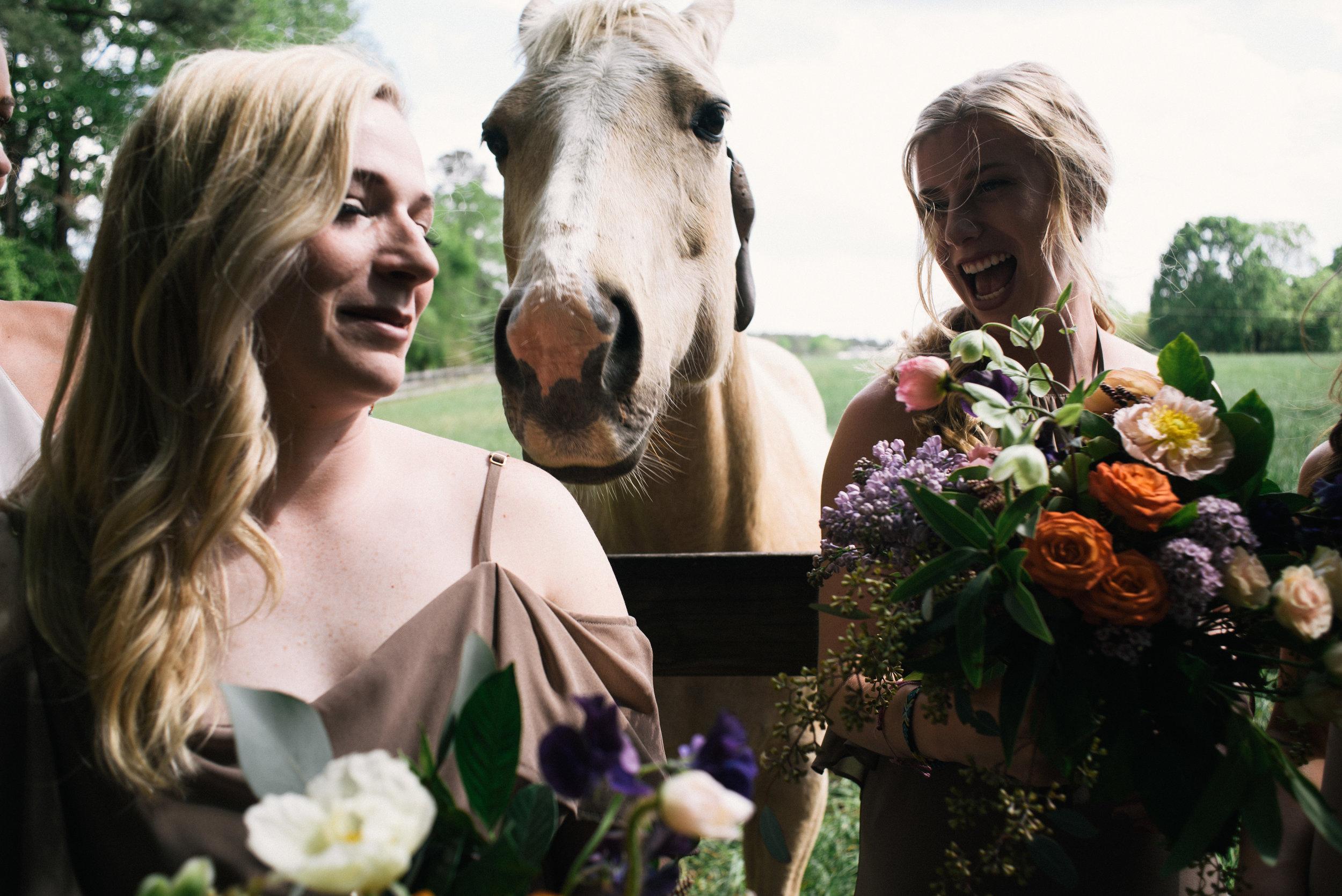 raleigh-elopement-photographer-raleigh-durham-wedding-maddie-and-devin- (51 of 162).jpg