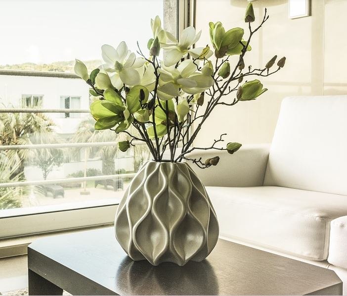 A house plant in a clean home