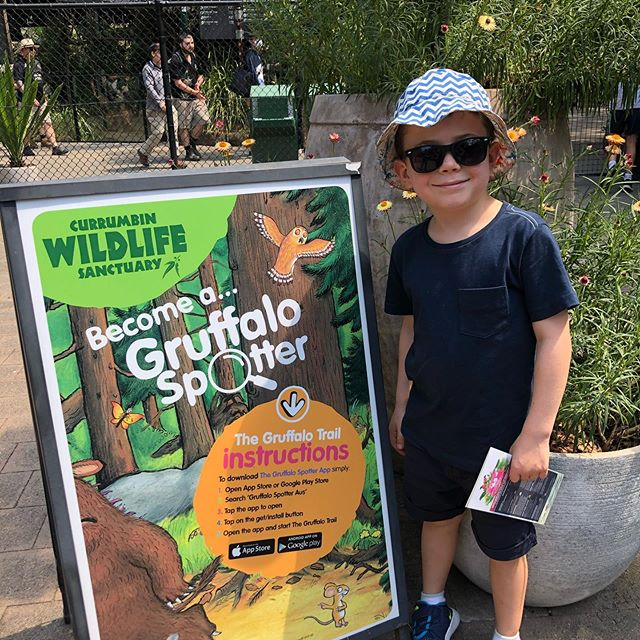 Best family adventure on the Gold Coast was @currumbinsanctuary we loved it! #gruffalospotter #holidayswithkids #lotusbayyogaadventures @amyariel @oliverw #maxotto