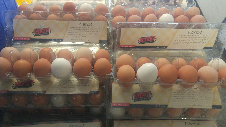 HCHF eggs.jpg