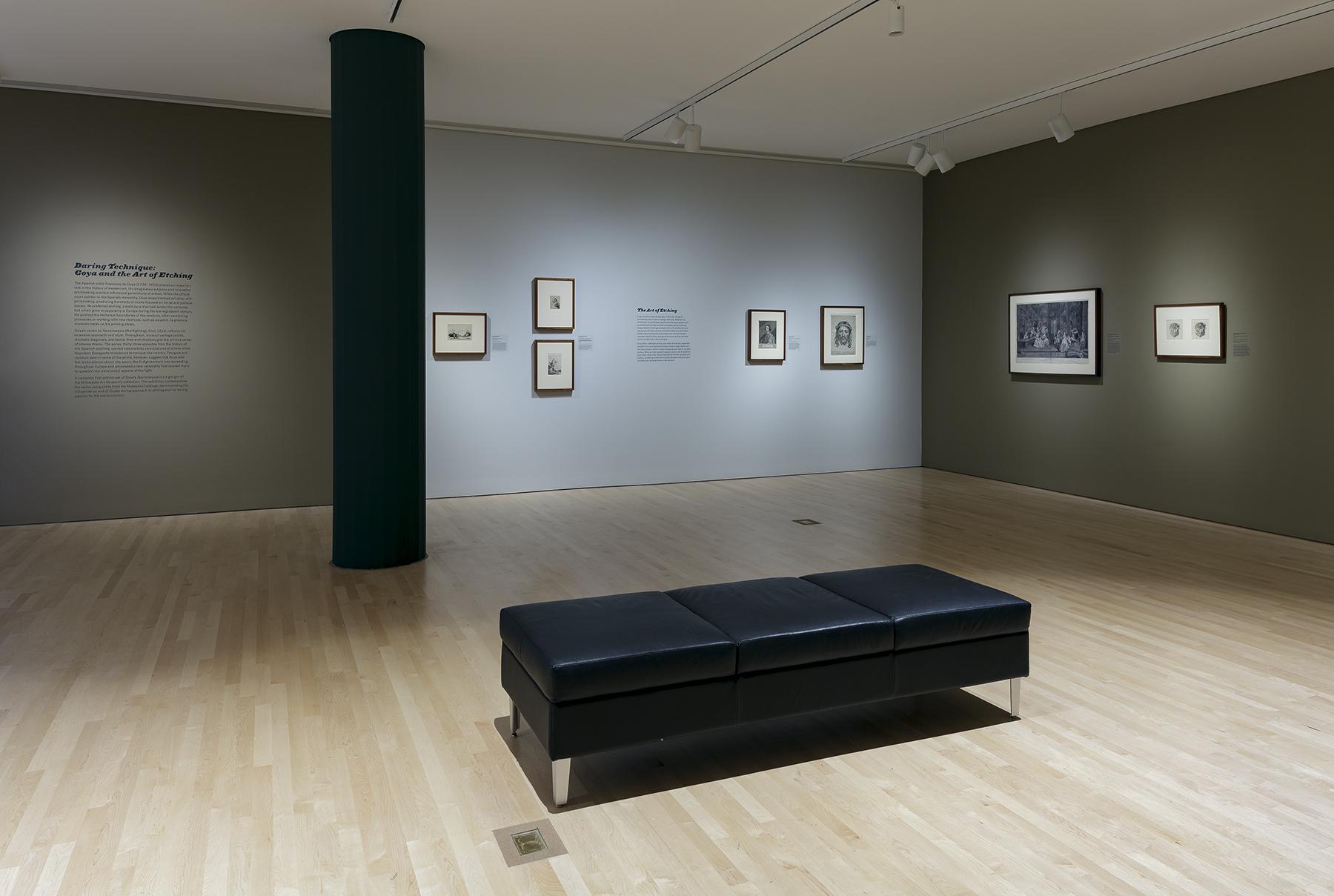 Goya_04.jpg