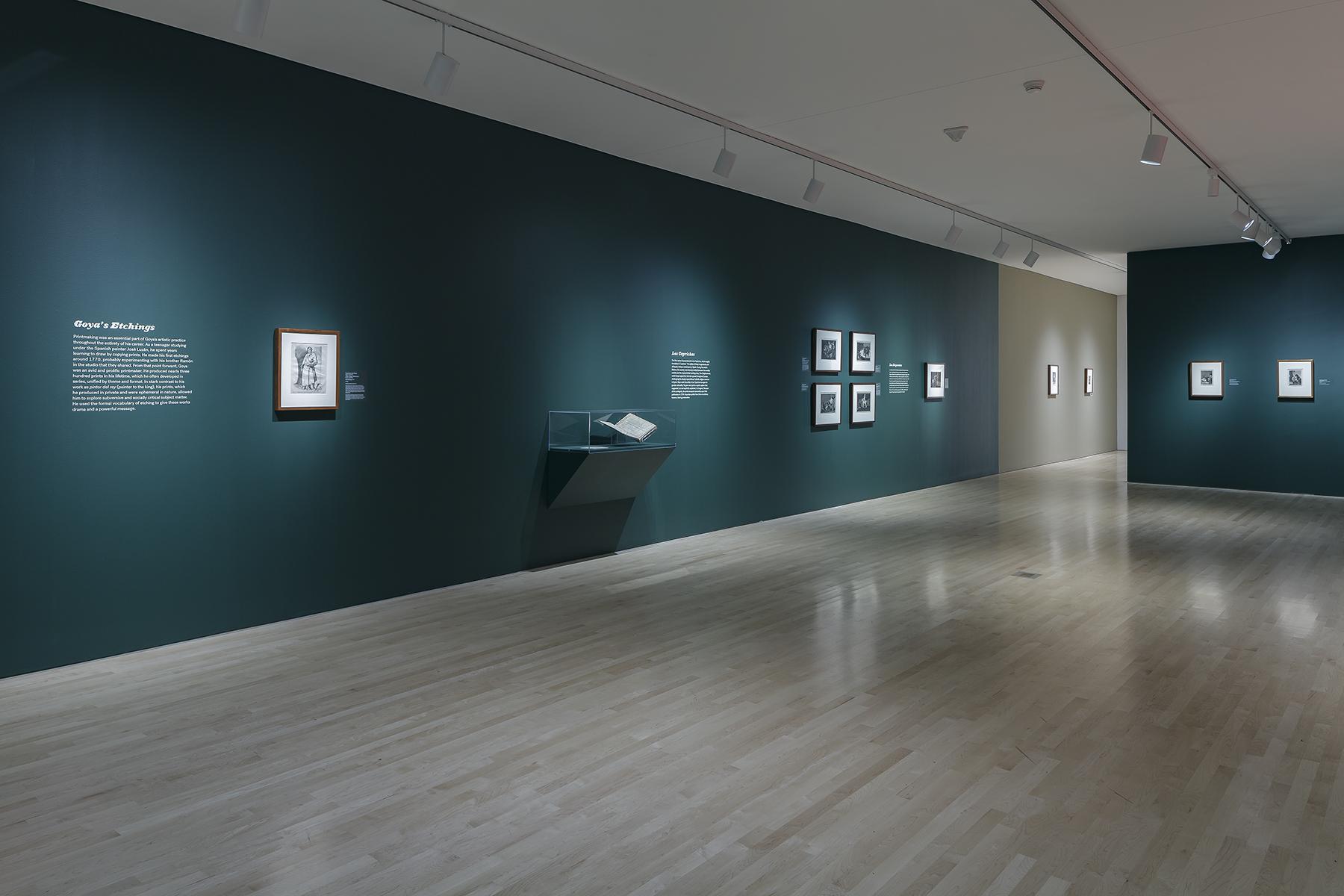 Goya_10.jpg