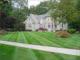 lawn maowing.jpg