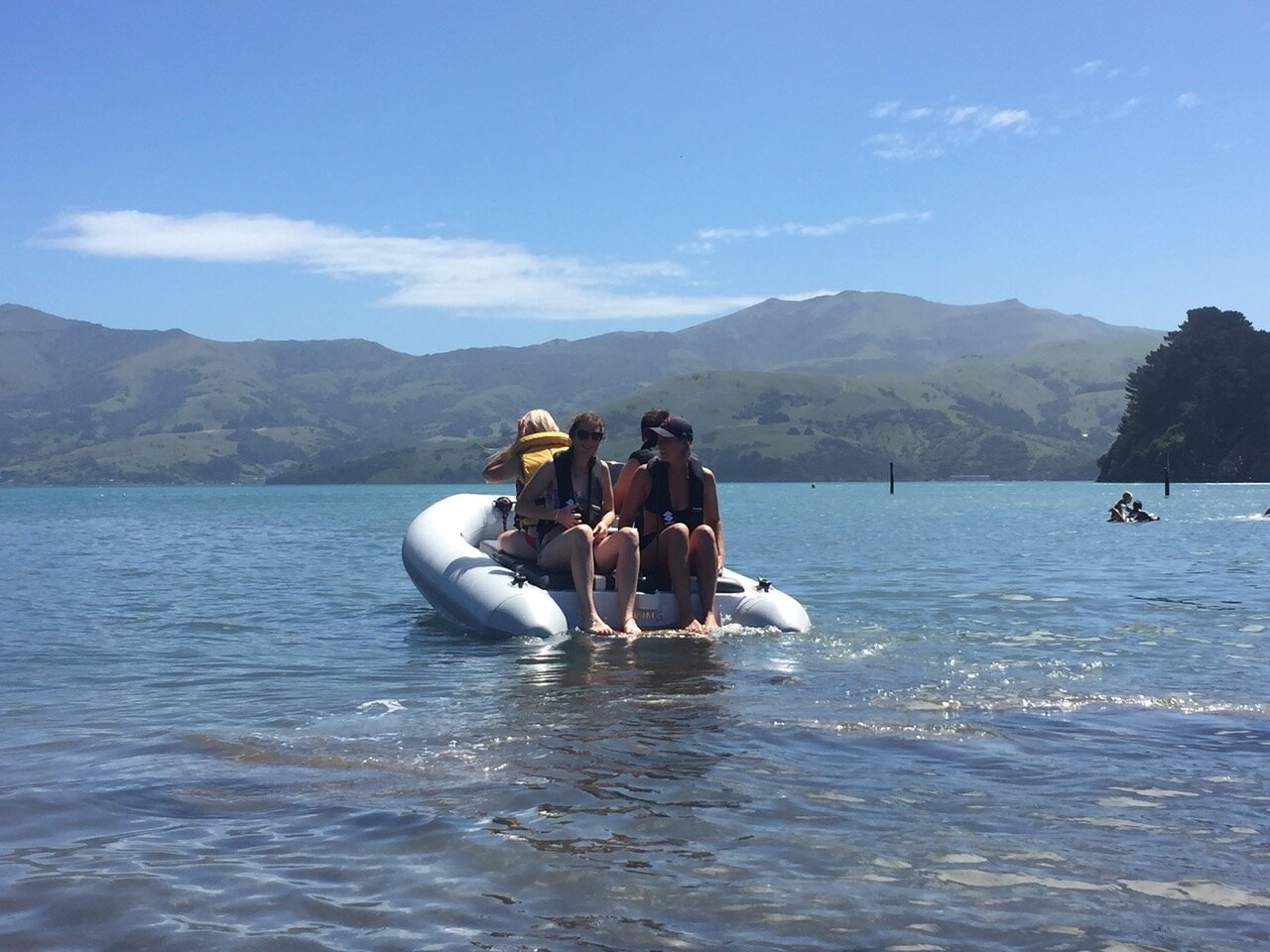 3.6 Jet taking the crew to the best swim spot in Akaroa harbour