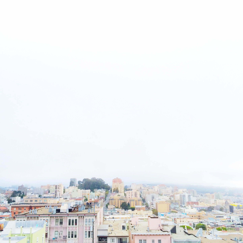 Stef_Etow_SF_skyline.JPG