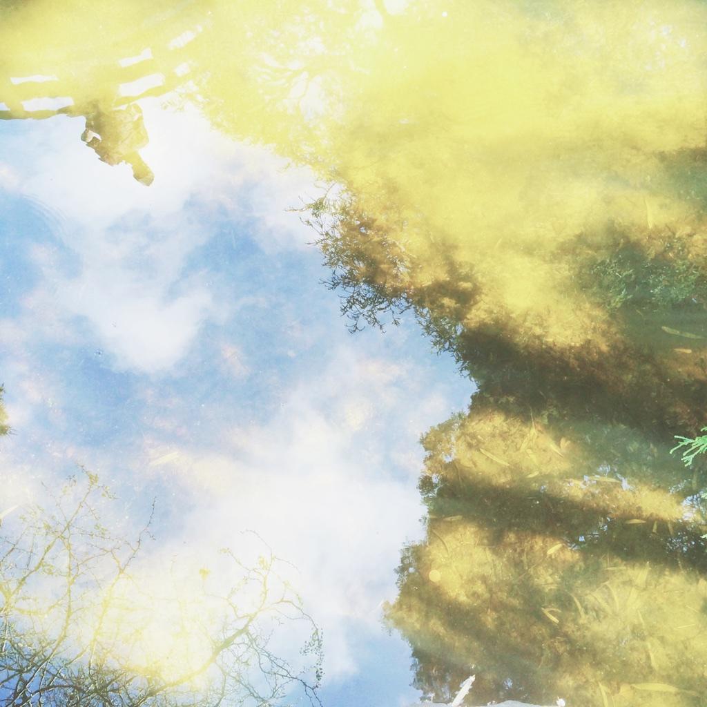 Stef_Etow_reflection_art.jpg