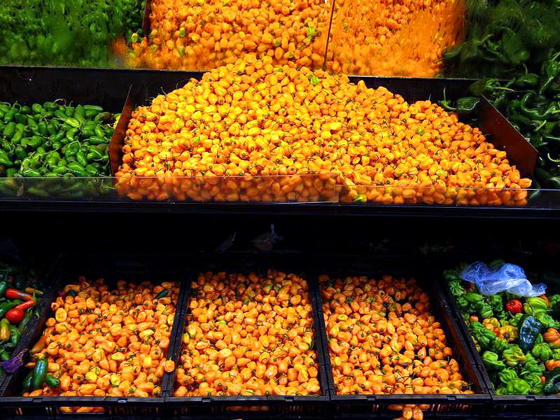 Established California | Grub | Homemade Habanero Salsa | Peppers