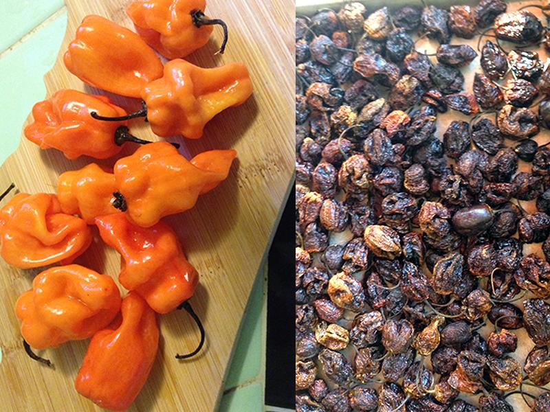 Established California | Grub | Homemade Habanero Salsa | Peppers Roasted