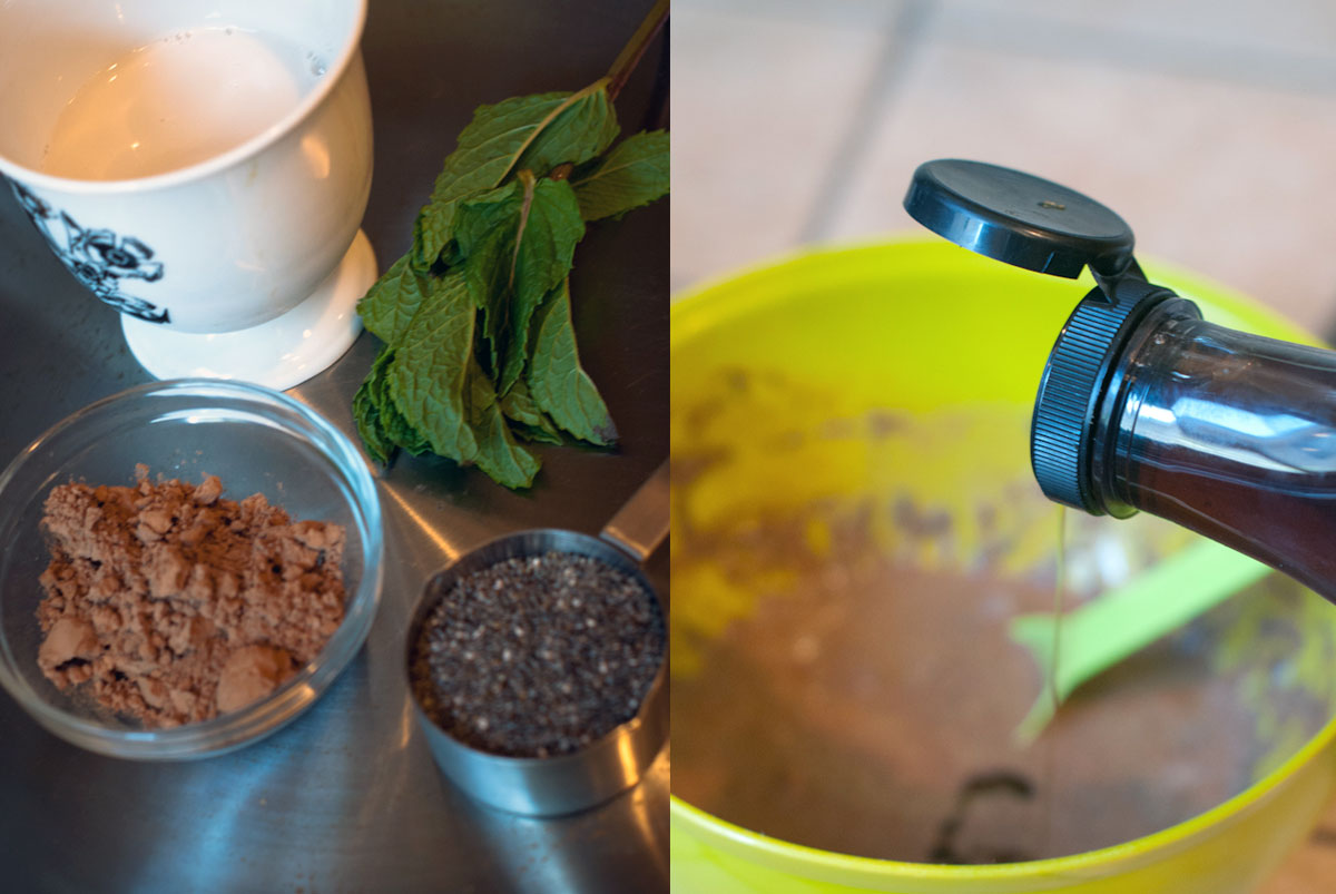 ChiEstablished California | Grub | Easy Chocolate Chia Seed Pudding | Mixings