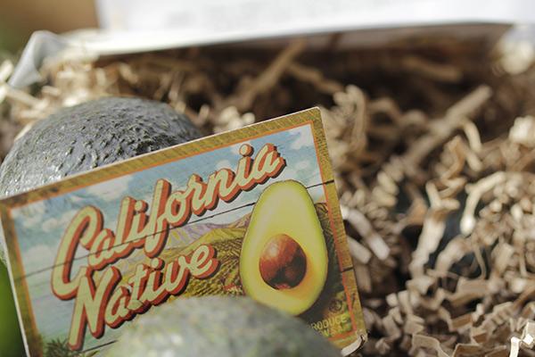 Image via California Avocado