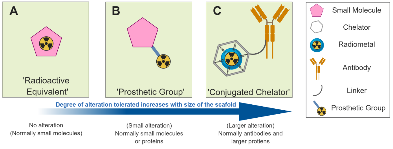 Figure 3. Different strategies for radiolabelling   As our understanding of how to deliver a radiotracer to its desired target progresses, radiotracer design can improve. In most cases, success will not be achieved at the first attempt. Novel radiotracers must be validated biologically (as discussed below). If the  in vitro  or  in vivo  studies show that the compound is not fulfilling the requirements of an informative radiotracer, the design and synthesis processes must start again using the new information acquired.
