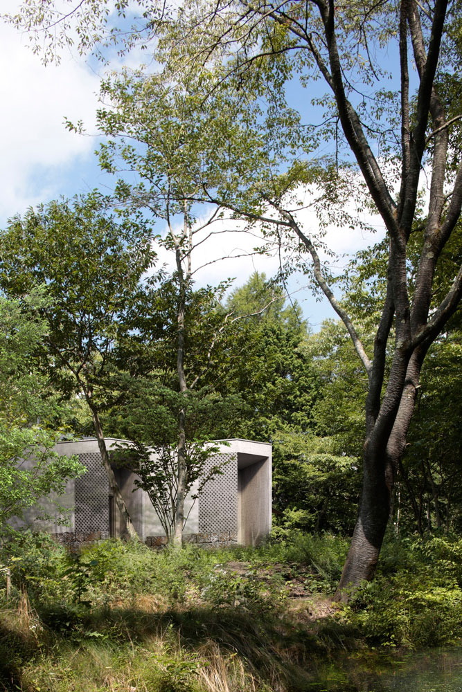 Modern Architect in forest