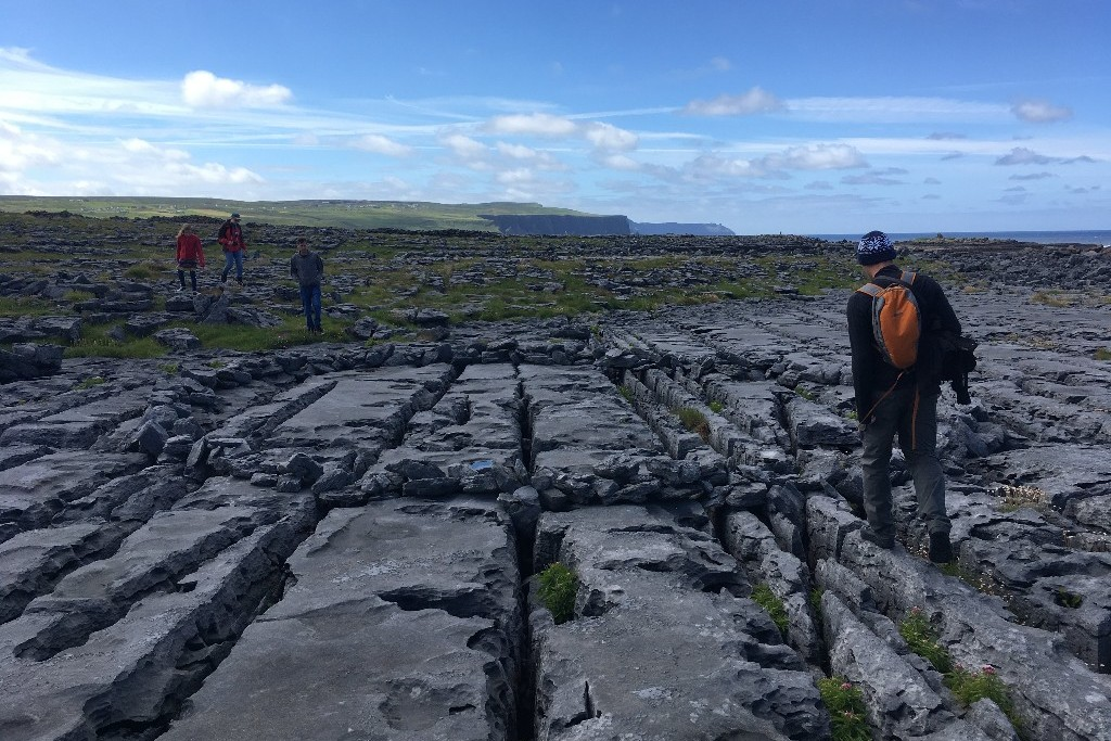 Burren clints and grykes in its karst landscape