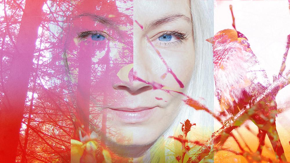 eline nordic collage.jpg