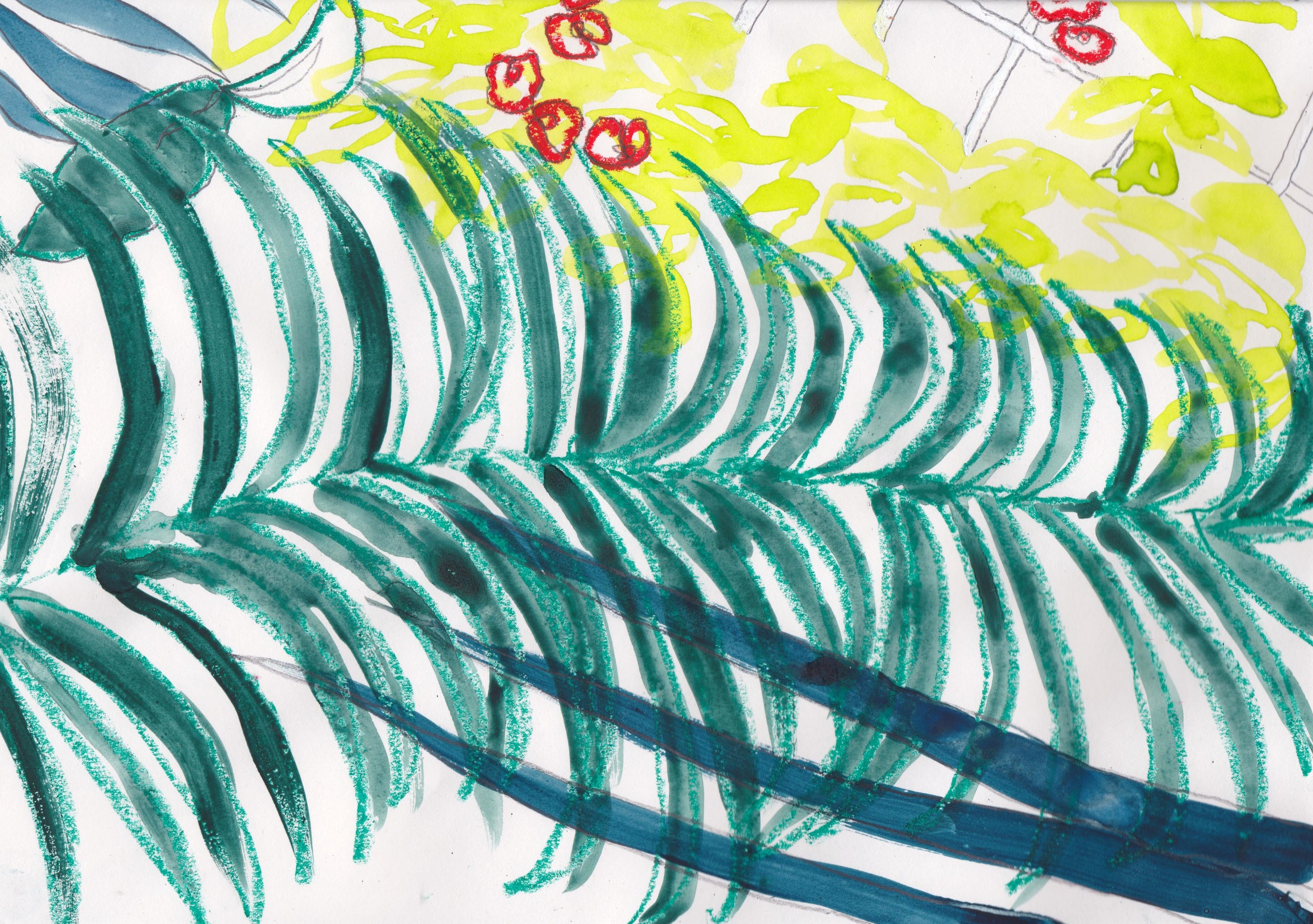 Overlapping palms