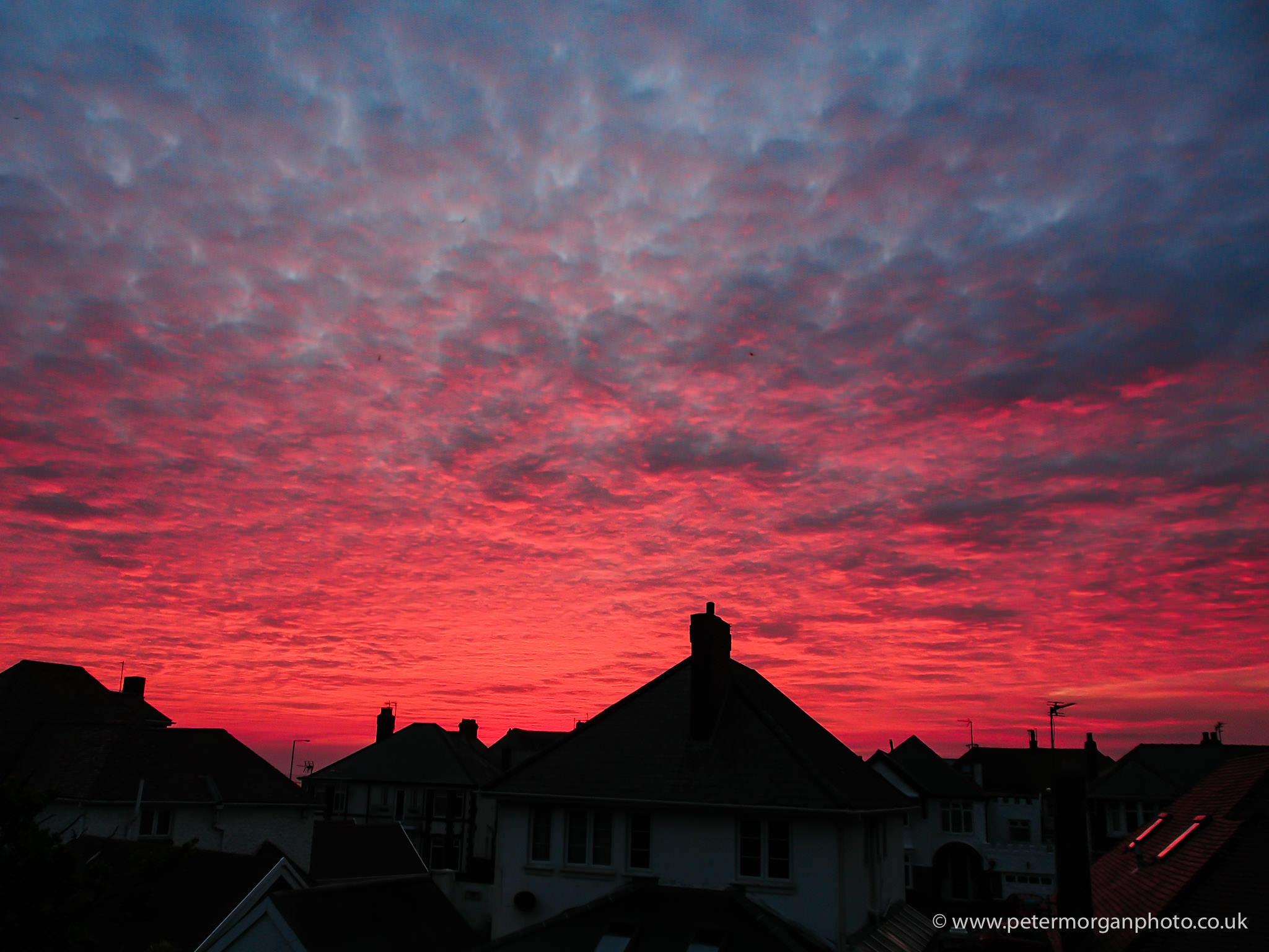 Sunset suburbia 20151011_006.jpg