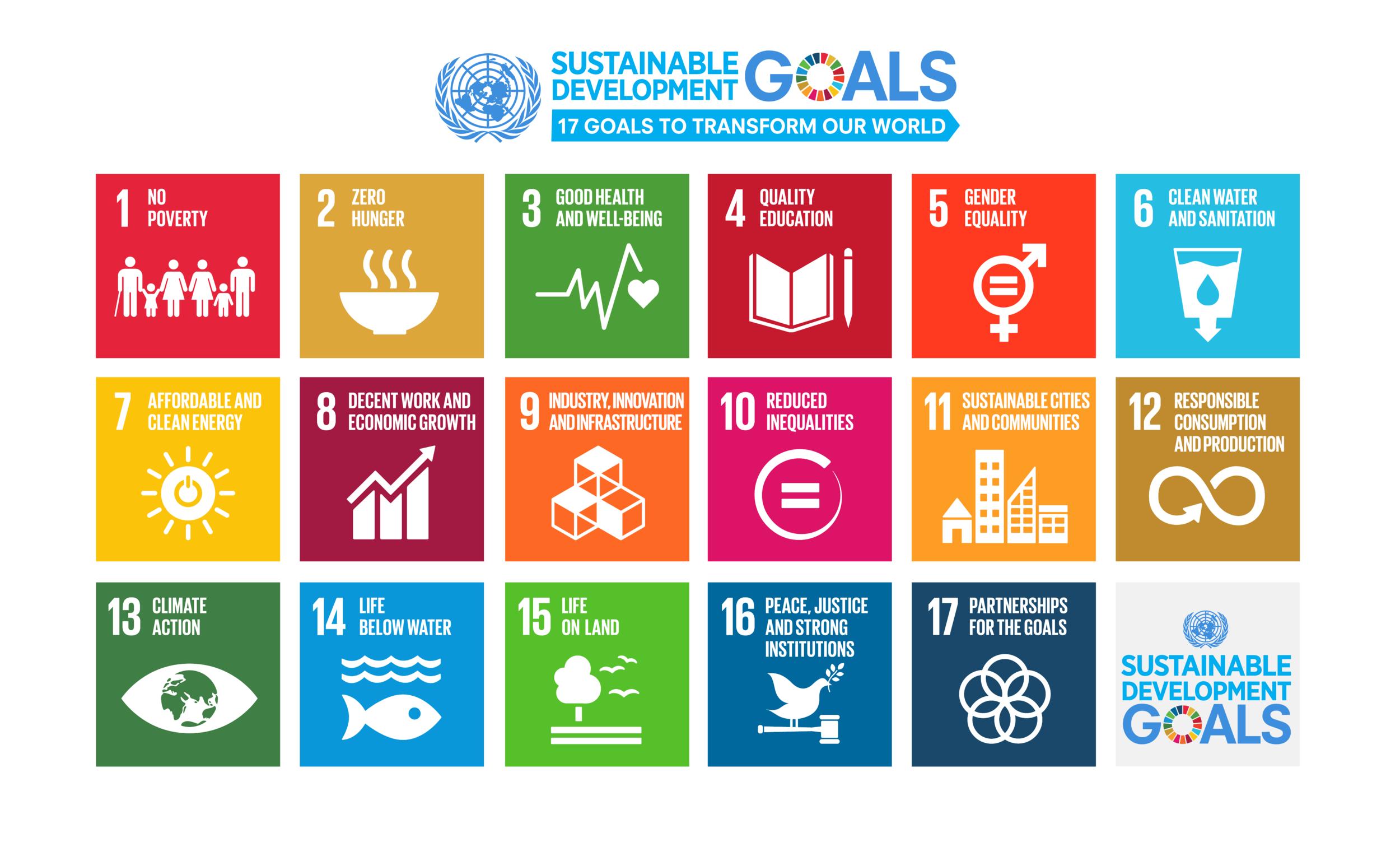 Sustainable Development Goals 2015