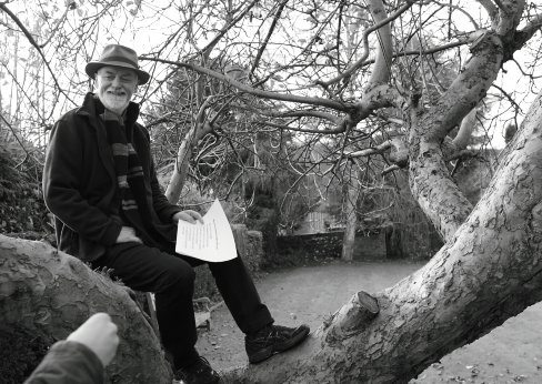 Steve Griffiths. In a tree.