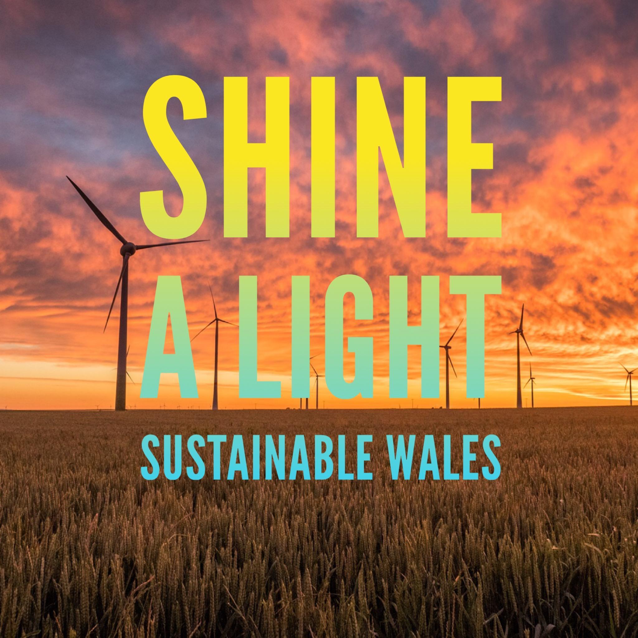 Shine a Light films