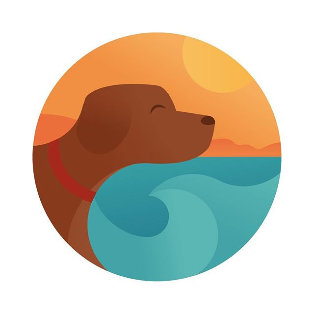 🌞I had so much fun developing this identity for coastal lodge premium dog care 🐶 - #logo #illustrations #branding #design #graphicdesign #dog #dogs