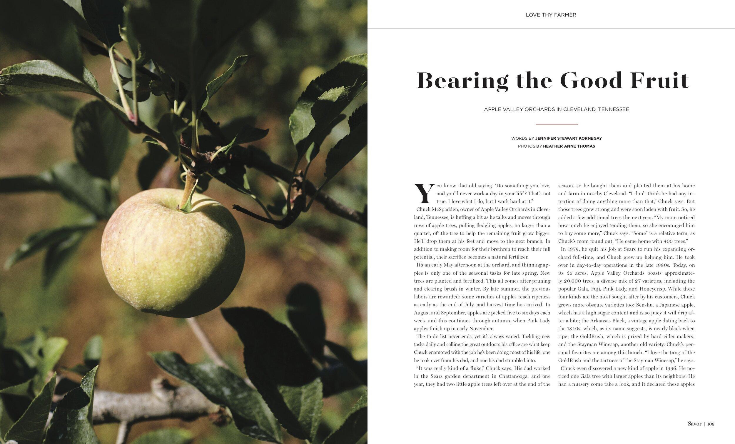 Love Thy Farmer - Bearing the Good Fruit.jpg
