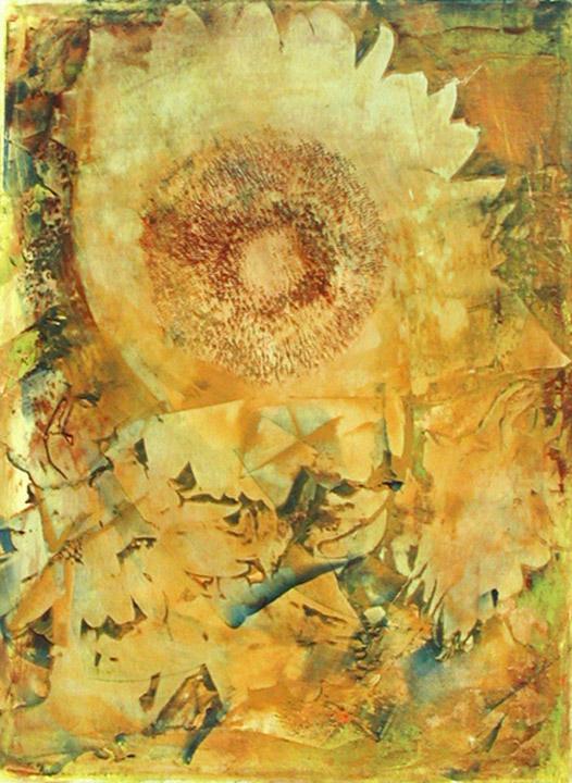 SunflowerIII.jpg