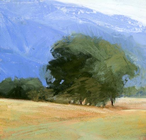 Northern California I