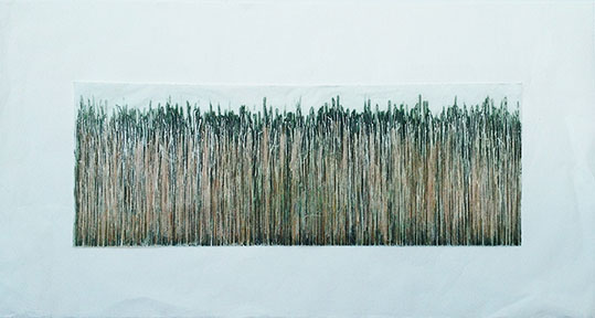 """Wide Grass XXIX"" 16in x 28in Etching with Aquatint by Mary D. Ott"
