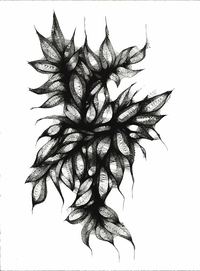 Morphogenesis02.jpg